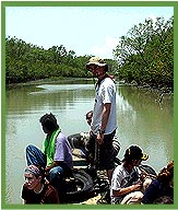 Boat Ride, Sundarbans National Park